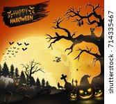 vector illustration of...   Shutterstock .eps vector #714335467