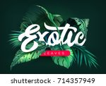 bright tropical background with ... | Shutterstock .eps vector #714357949