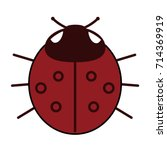 lady bird or red ladybug... | Shutterstock .eps vector #714369919