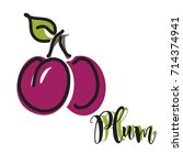 vector illustration of a plum... | Shutterstock .eps vector #714374941