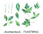 green watercolor silhouettes of ... | Shutterstock . vector #714378961