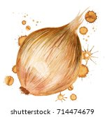 watercolor image of onion with...
