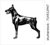 hand drawn vector illustration...   Shutterstock .eps vector #714512947