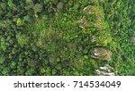 an overhead shot of green rain... | Shutterstock . vector #714534049