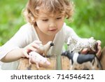 Cute Toddler Girl Playing Farm - Fine Art prints