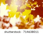 abstract autumn leaves.... | Shutterstock . vector #714638011