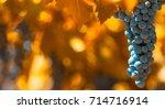 grape bunch  very shallow focus | Shutterstock . vector #714716914
