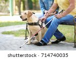 young woman and blind man with... | Shutterstock . vector #714740035