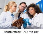 group of scientific workers...   Shutterstock . vector #714745189