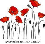 red poppies - stock vector