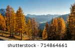 trees and mountains   beautiful ... | Shutterstock . vector #714864661