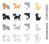 wild animal bear  ravenous... | Shutterstock .eps vector #714913201