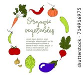 organic food template. vector