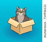 cat in box pop art retro vector ...   Shutterstock .eps vector #714936121