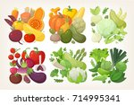 colorful vegetables organized... | Shutterstock .eps vector #714995341