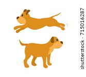 dog in different poses. puppy... | Shutterstock .eps vector #715016287