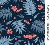 engraving autumn rowanberry... | Shutterstock .eps vector #715056349