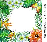 beautiful tropical palm leaves... | Shutterstock . vector #715077385