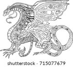 vector coloring book for adults ... | Shutterstock .eps vector #715077679