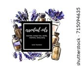 lavender. vector illustration... | Shutterstock .eps vector #715094635