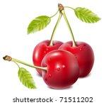 vector cherries | Shutterstock .eps vector #71511202