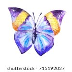 purple watercolor butterfly ... | Shutterstock . vector #715192027