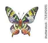green butterfly  watercolor... | Shutterstock . vector #715192051