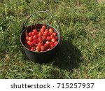 sweet cherries in a cauldron | Shutterstock . vector #715257937