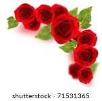 Stock photo fresh red roses border isolated on white background 71531365