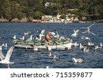portofino  liguria italy   july ... | Shutterstock . vector #715359877