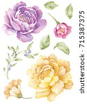 watercolor illustration bouquet ... | Shutterstock . vector #715387375