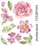 watercolor illustration bouquet ... | Shutterstock . vector #715387441