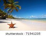 starfish on caribbean beach... | Shutterstock . vector #71541235