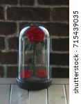 the eternal rose in the flask | Shutterstock . vector #715439035