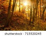 sunbeams in foggy autumn forest | Shutterstock . vector #715520245