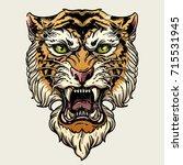 vector illustration head... | Shutterstock .eps vector #715531945