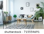 scandi carpet in classic living ... | Shutterstock . vector #715554691