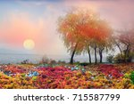 Beautiful And Sad Autumn Scene...
