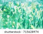 green blurred summer background | Shutterstock . vector #715628974