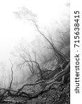 misty morning on the mountain...   Shutterstock . vector #715638415