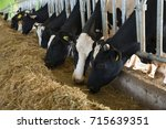 agriculture industry  farming... | Shutterstock . vector #715639351