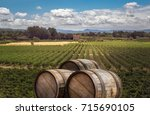 wide panorama of agricultural... | Shutterstock . vector #715690105