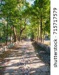 Small photo of Walkway trough the abandoned Maharishi Mahesh Yogi Ashram (Beatles Ashram).