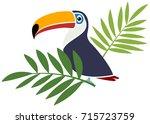 vector toucan bird with palm... | Shutterstock .eps vector #715723759