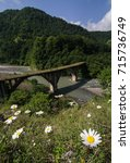 Small photo of Abandoned bridge in Abkhazia and chamomiles