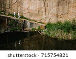 reflection of people going near ...   Shutterstock . vector #715754821