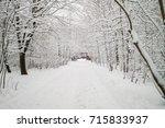 Snowy Tree Alley