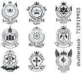 heraldic coat of arms  vintage... | Shutterstock .eps vector #715919905