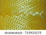 nylon chord   yellow | Shutterstock . vector #715923175