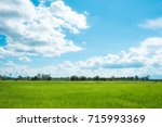 landscape of sky with rice... | Shutterstock . vector #715993369